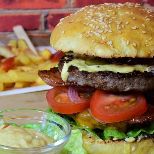 hamburguesa freidora sin aceite
